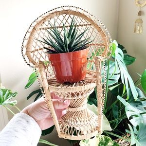 Vintage Peacock Chair Plant Stand